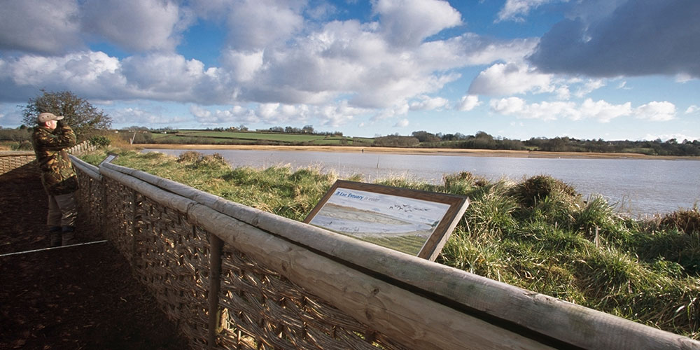 rspb-bowling-green-marsh-darts-farm-devon-1000x500