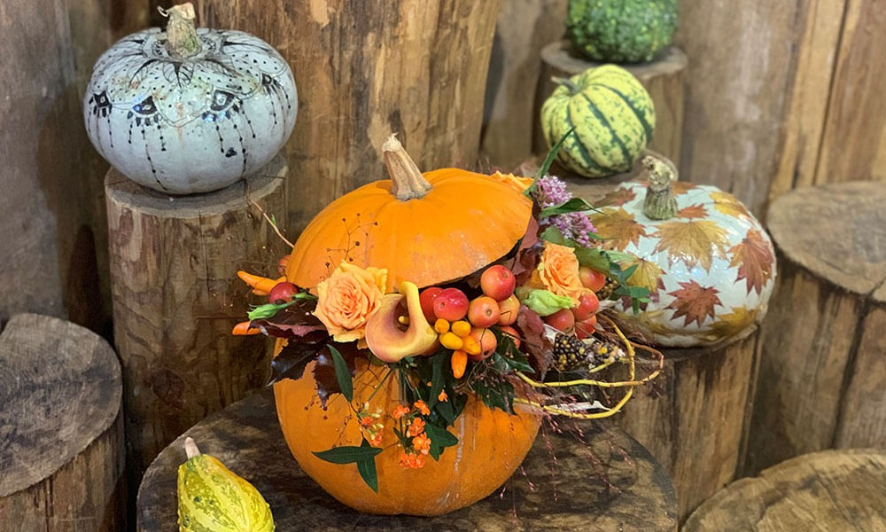 Top Tips from our Expert Florist for Autumn